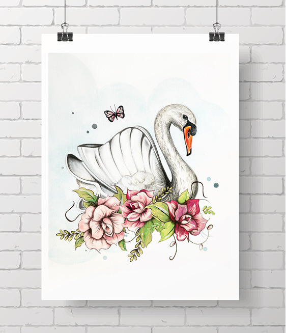 swan - aloha