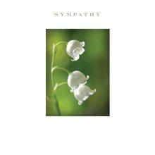 Sympathy White Bell Flower