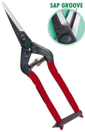 T-55c Secateurs - for harvesting and pruning grapes