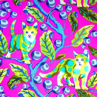 Tabby Road - Disco Kitty Berry
