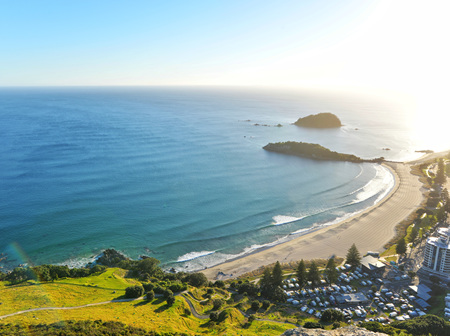 Tauranga & Mount Maunganui Customer Reviews