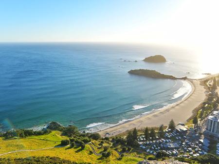 Tauranga & Mount Maunganui Customer Reviews