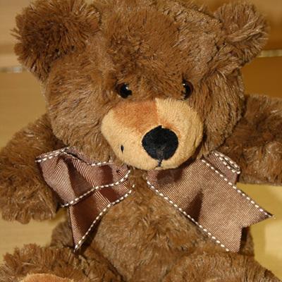 Teddy: Roly Bear