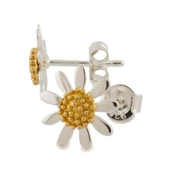 The Daisy and Bee Collection