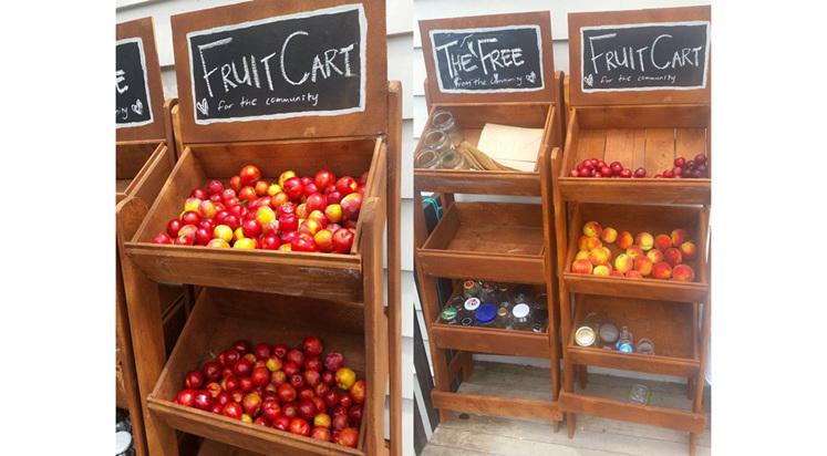 The Free Fruit Cart | The Coastal Market