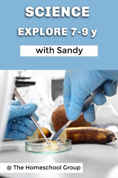 12:30 pm SCIENCE EXPLORE! (7-9y)