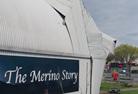 the merino story