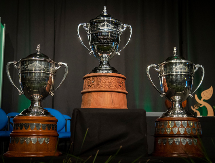 The three Ahuwhenua trophies side by side, with the newest replica in the centre
