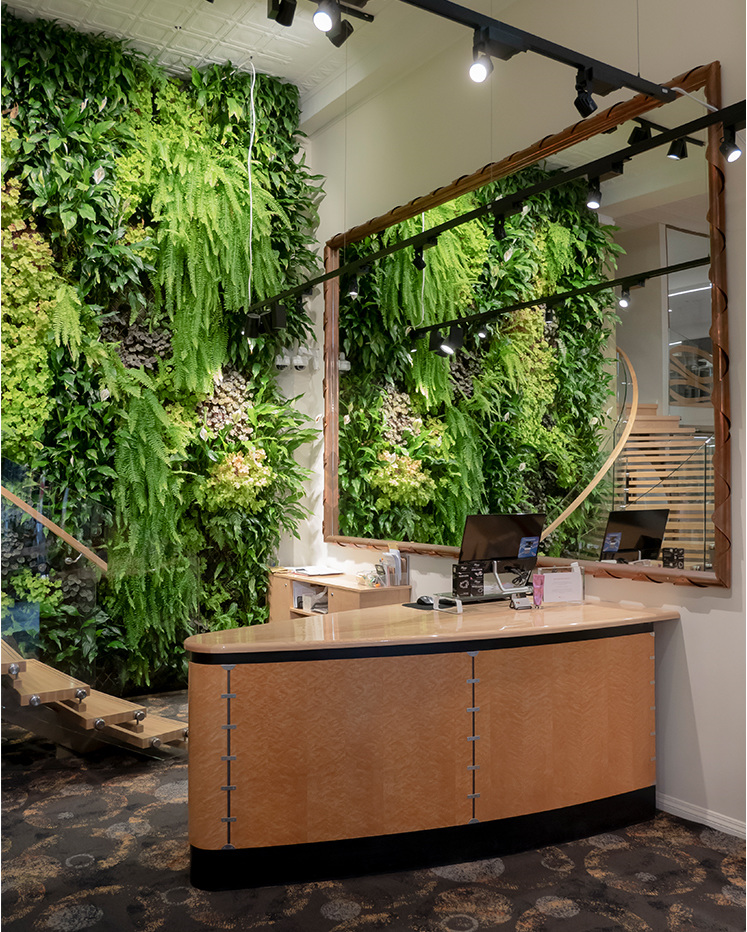 The Village Goldsmith In Store - Living Green Plant Wall and Front Counter