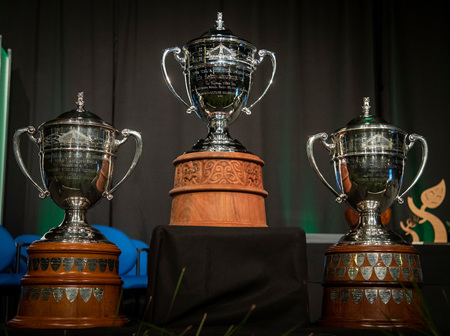 The Village Goldsmith x Ottewill Silversmiths:  Creating a Replica Ahuwhenua Trophy for Horticulture