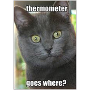Thermometer Fridge Magnet