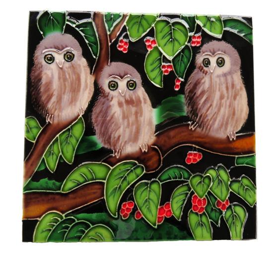 Three morepork or ruru chicks in a Puriri tree