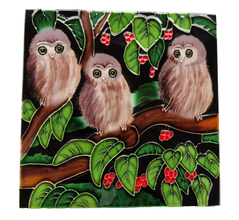 Three morepork or ruru chicks in a Puriri tree