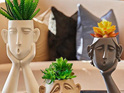 Three's Company Face Planters - The White One