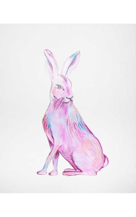 Tia Hare