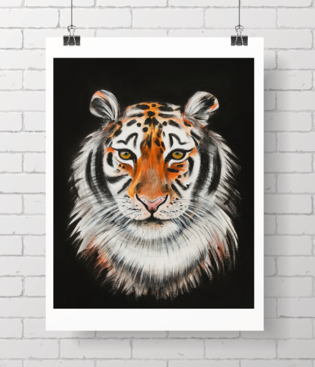tiger on black