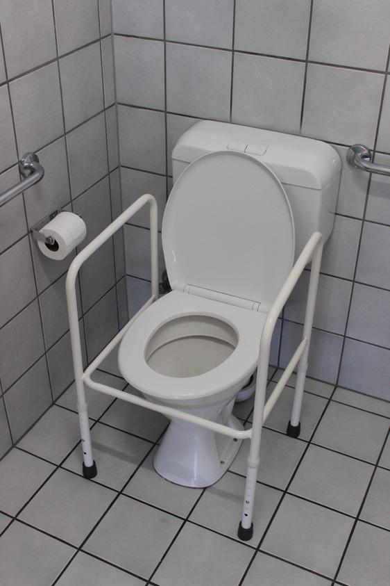 toilet seat surround