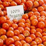 Tomatoes Certified Organic Approx 100g