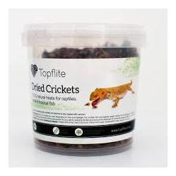 Topflite Dried Crickets