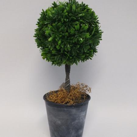 Topiary Matai 1051