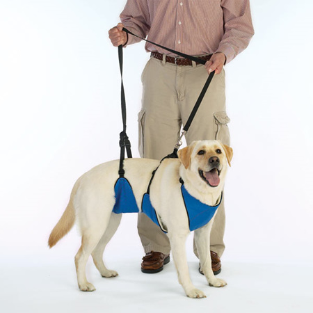 Total Dog Harness