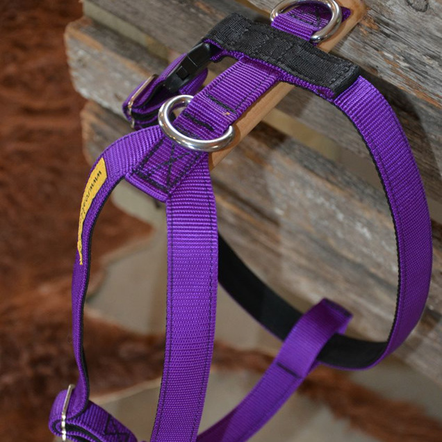 Tracking Harness