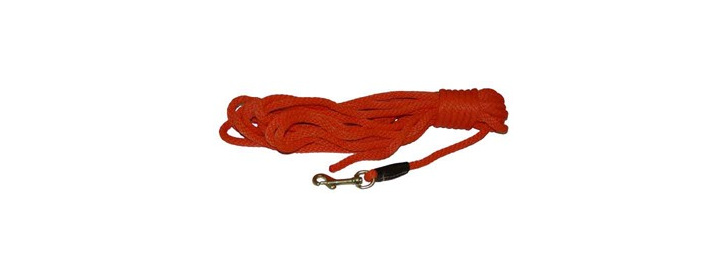 "Training Leash Check Cord 3/8"" Orange"