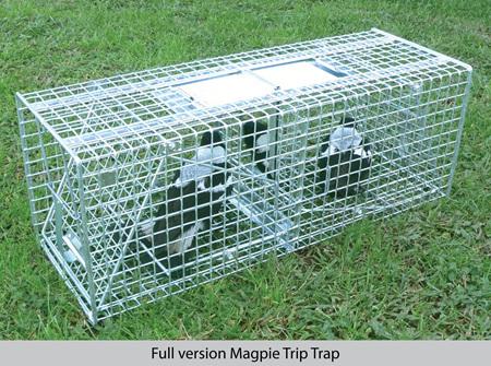 TrapWorks Full version Magpie Trap