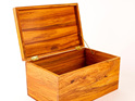 Treasure Box 0019