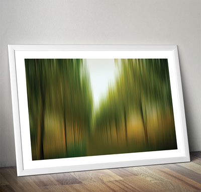 Tree Lined Ave Print