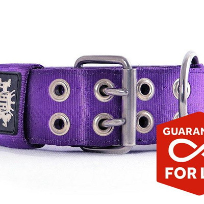 Rogue Royalty SupaTuff Purple Dog Collar