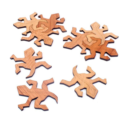 Tuatara Coasters