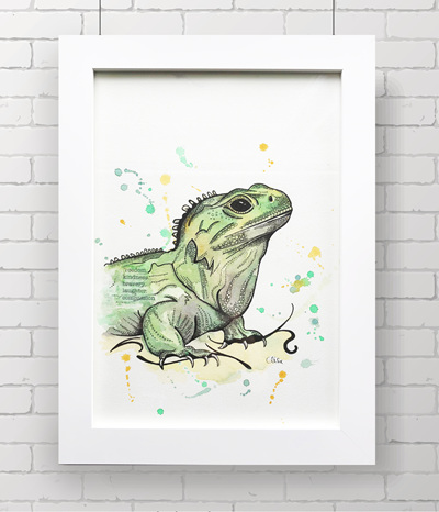 Tuatara - THE ORIGINAL - framed