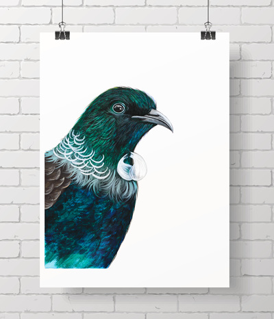 Tui - here's looking at you