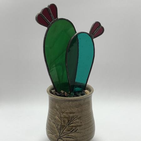 Turnip Cactus 2021