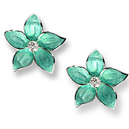 Turquoise Enamel Topaz Flower Stud Earrings