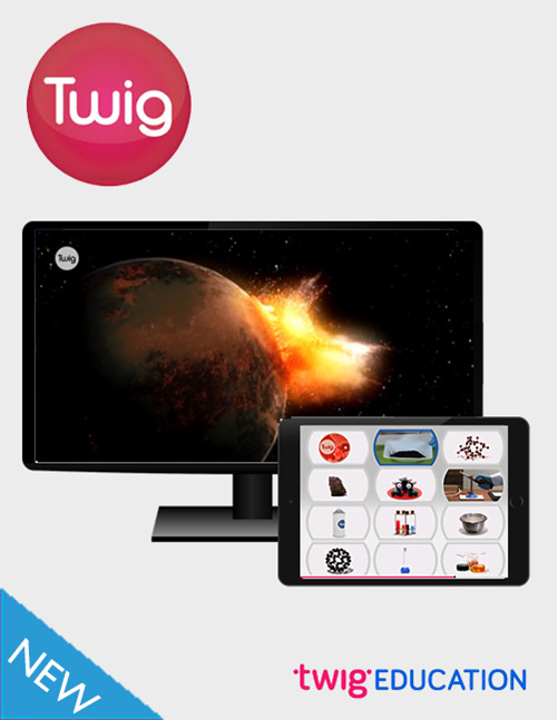 Twig - buy online from Edify