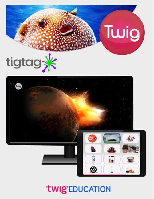 Twig - buy online from Edify