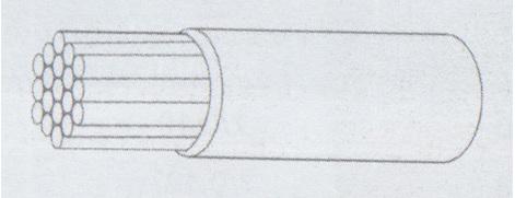 type 55 raychem wire
