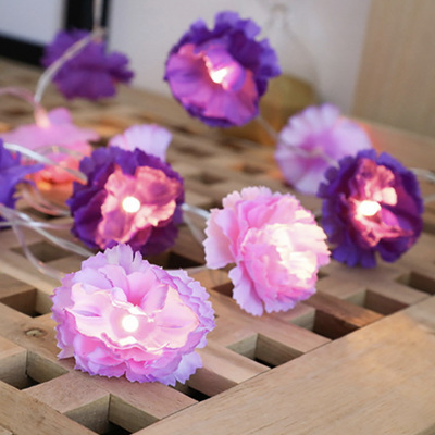 USB 3m 20 Purple Flower Fairy Lights - Warm White