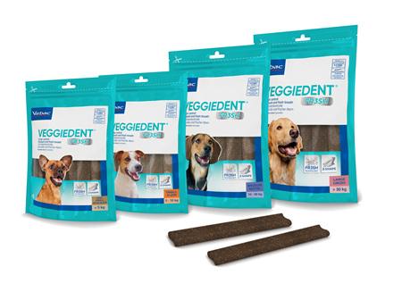 Veggiedent FR3SH Dog
