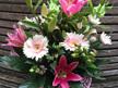 Vibrant Pink Tones Bouquets/Posies