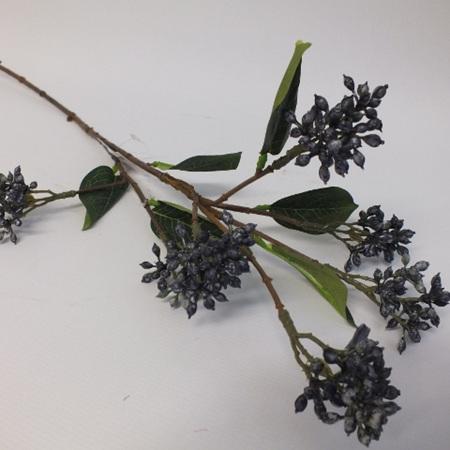 Viburnum Berry Blue 4520