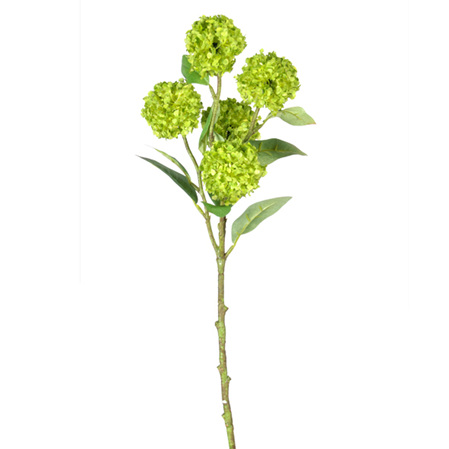 Viburnum Snowball Stem Lime 4380