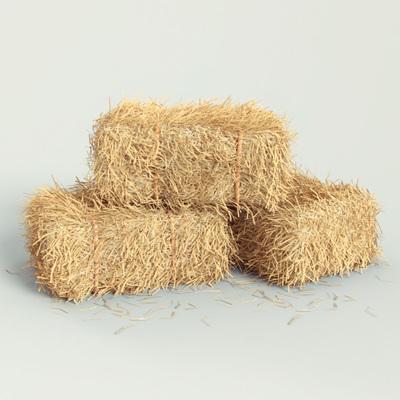 Virtual Hay Bale