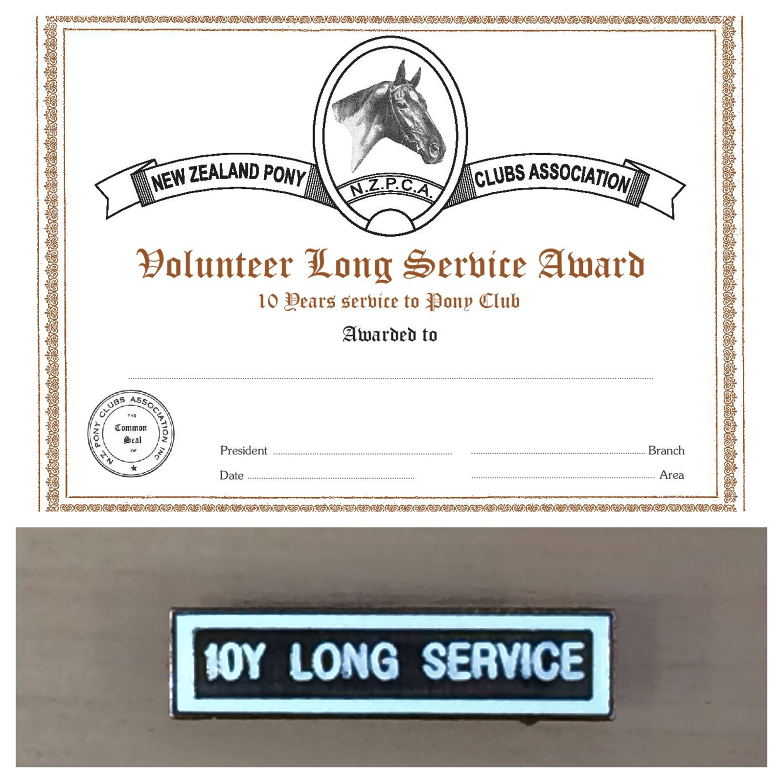 volunteer long service certificate and badge bronze 10 yr nzpca