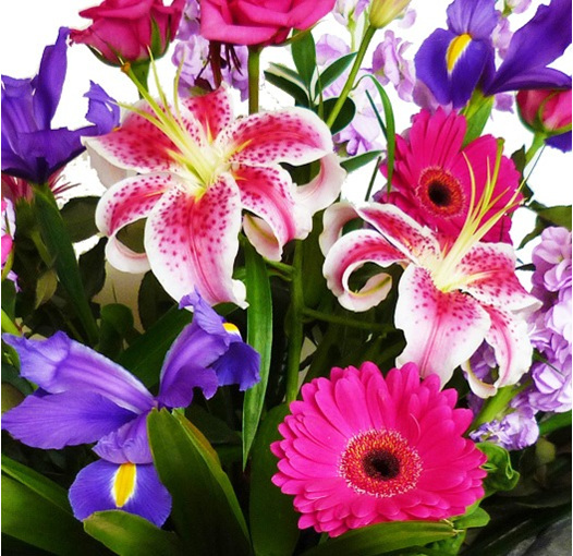 vox flower bouquet delivered to epsom, royal oak, greenlane, one tree hill