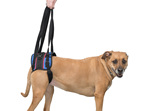 Walkin' Lift Combo Harness
