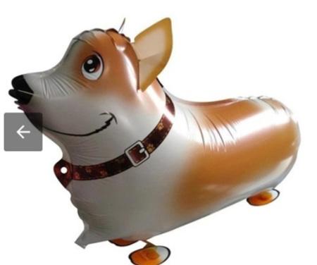 Walking Pet Balloon - Corgi dog
