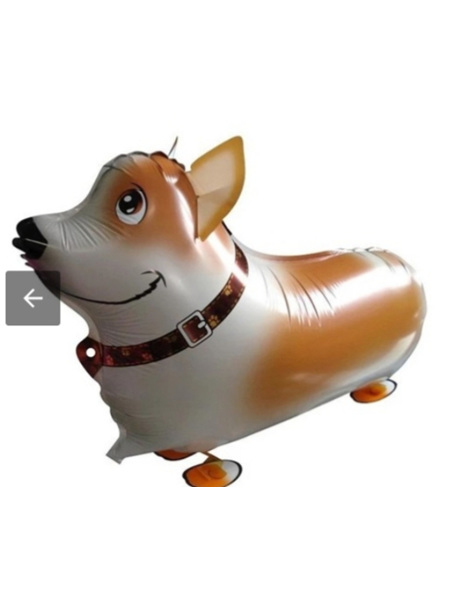Walking Pet Balloon - Corgi dog